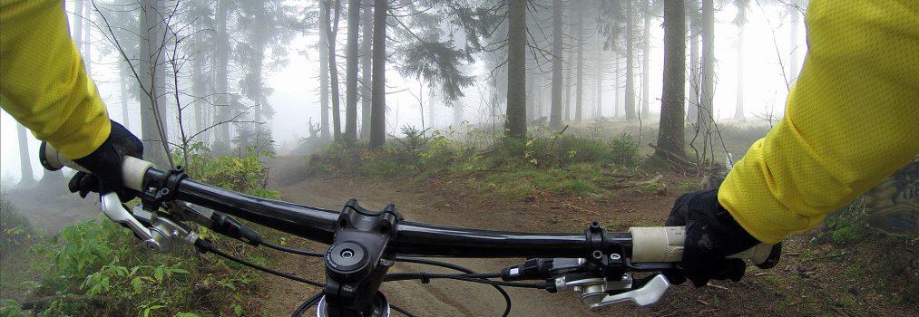 Rowerem nad Odrę